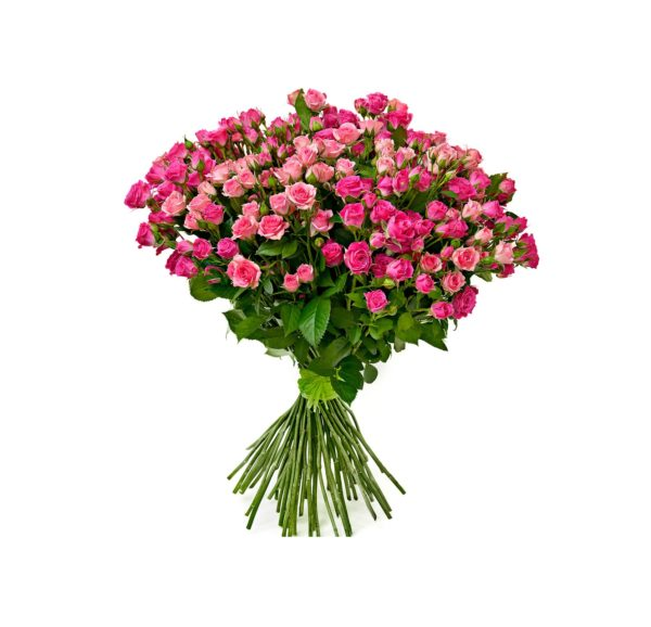 Букет-из-35-розовых-кустовых-роз